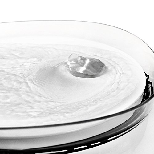 HomeRunPet Water Fountain Automatic Fresh Flow for Cats and Small to Medium Dogs, 2-Liter by HomeRunPet (Image #5)