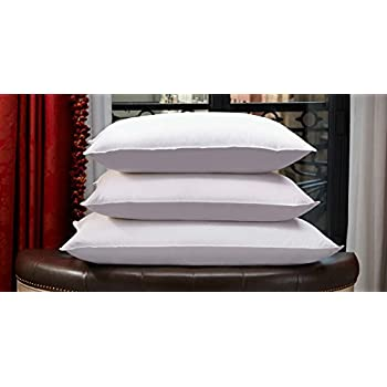 st regis hotels king feather and down pillow