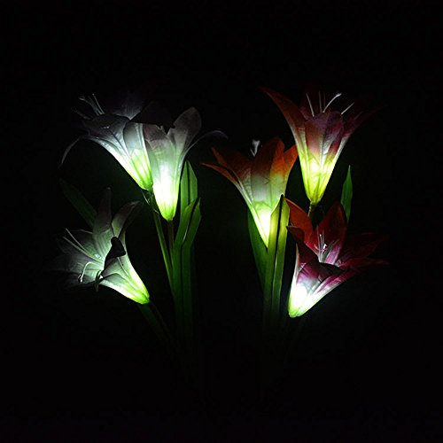 2 Pack Lily Flower Solar Lights, Solar Powered Garden Stake Lights Artificial Flowers LED Decorative Light for Front Door, Yard, Garage, Patio,Lawn, Deck (Purple +White)