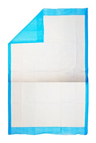 A-World-Of-Deals-Disposable-Blue-Underpad-23-X-36-150Case