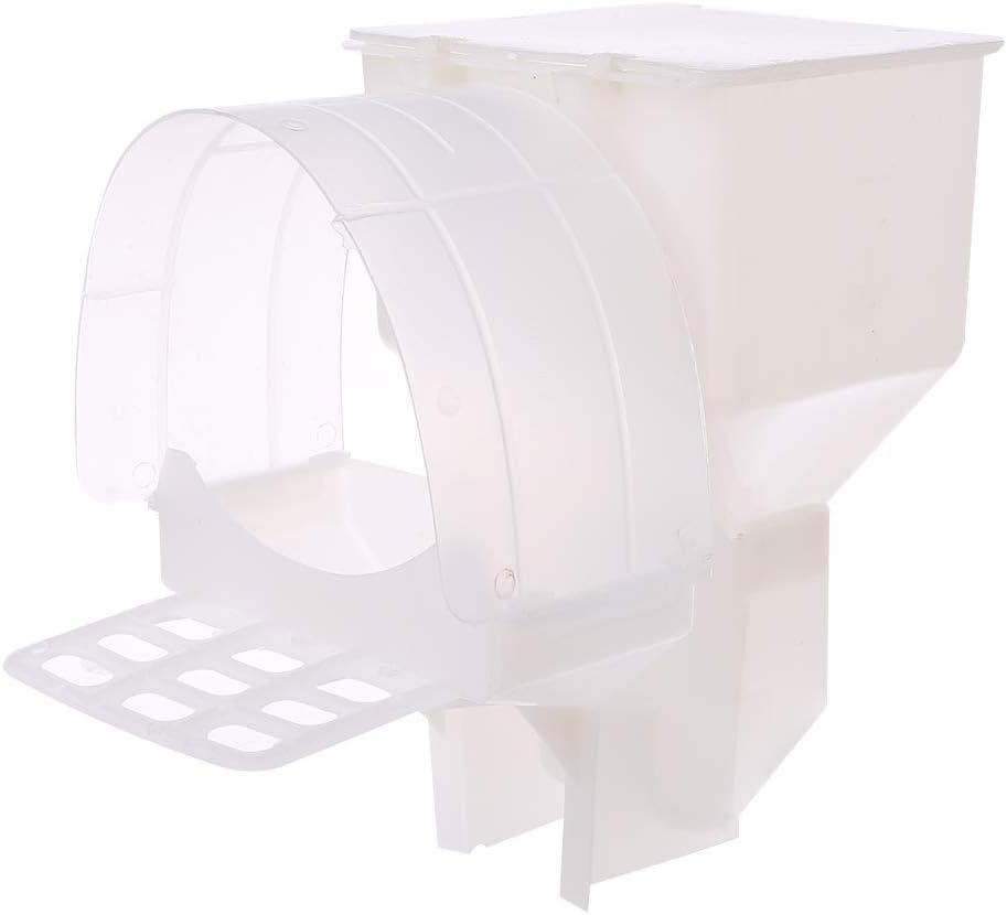 Koobysix - Comedero automático para pájaros con un Solo Agujero para Colgar, dispensador de Alimentos para Loros, Caja de plástico, Accesorios para tu pájaro