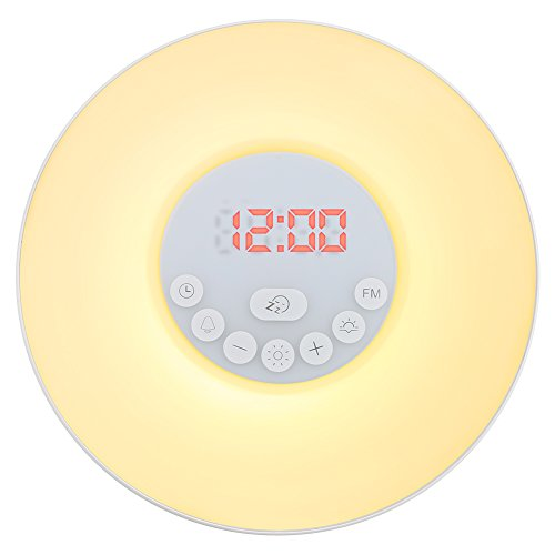 SDLIFE Wake Up Light FM Radio Alarm Clock, Nature Night Light With 7 Colors, Nature Sounds, FM Radio, Touch Control and USB Charger