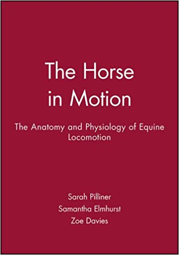 Amazon.com: The Horse in Motion: The Anatomy and Physiology of ...