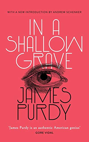 Pdf Gay In a Shallow Grave (Valancourt 20th Century Classics)