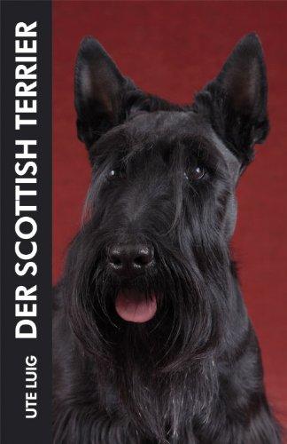 Der Scottish Terrier