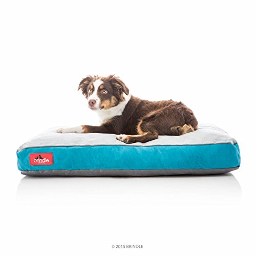 BRINDLE Soft Memory Foam Dog Bed with Removable Washable Cover - 28in x 18in - Teal