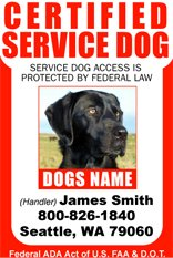 Dean and Tyler CERTIFIED SERVICE DOG ID Badge – 1 Dog's Custom ID Badge – Design#3- Vertical., My Pet Supplies