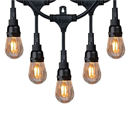 Honeywell 36' Vintage Style LED String Light Set Amber Indoor/Outdoor