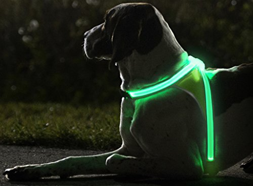 noxgear-LightHound–Revolutionary-Illuminated-and-Reflective-Harness-for-Dogs-Including-Multicolored-LED-Fiber-Optics-USB-Rechargeable-Adjustable-Lightweight-Rainproof
