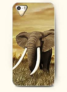 OOFIT Phone Case design with An Elephant with Big Ear for Apple iPhone 5 5s 5g