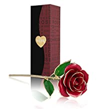 Cozime Red Rose Flower, Best Gift for Valentine's Day, Mother's Day, Anniversary, Birthday Gift, Gift for Lover Mother Girlfriend, 24k Gold Foil Trim Gold Dipped Rose In Gift Box (Red)