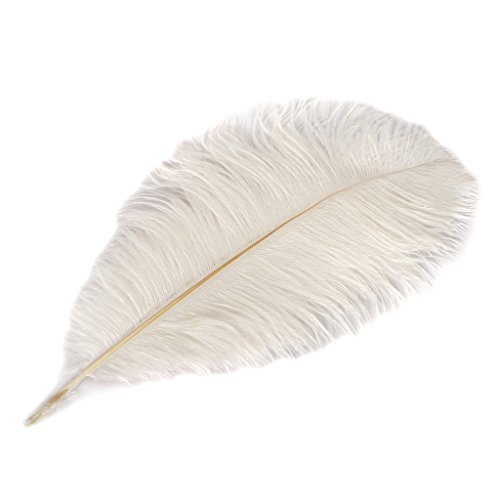 Wionya 5pcs Ostrich Feather Craft 16-18inch(40-45) Plume for Wedding Centerpieces Home Decoration