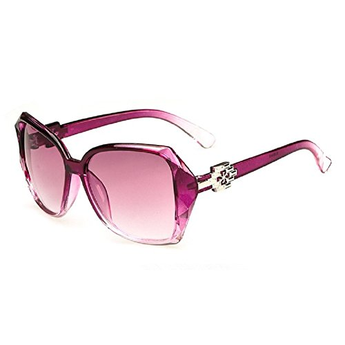 O-C Women's Classical style wayfarer - Smith Sunglasses Wayfarer Paul