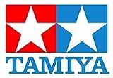 TAMIYA(タミヤ) タミヤ XB RAYBRIG NSX CONCEPT-GT (TT-01シャーシ TYPE-E) (ラジコン)