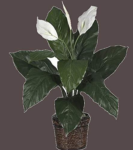 Spathyfillum w/Wicker Silk Plant faux flowers artificial plants new amazing look