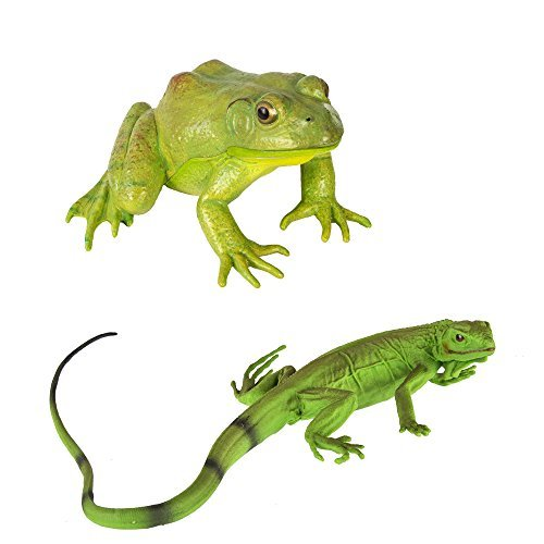 Safari Ltd Iguana Baby & Bullfrog Bundle - Realistic Hand Painted Toy Figurine Models - Phthalate, Lead & BPA Free Materials - Ages 3+
