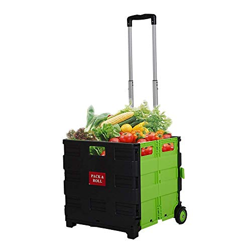 Dporticus Folding Two-Wheeled Trolley Hand Cart Plastic Hefty Heavy Carry Shopping Picnic Travel Office (Large, Green)