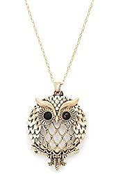 Owl Magnifier Magnifying Glass Sliding Top Magnet Pendant Necklace, 30""