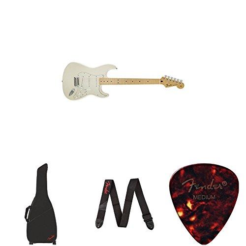 Fender Standard Gig Bag - 2