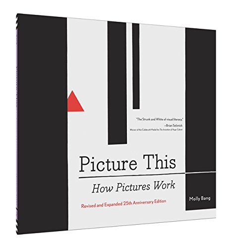 Book Cover: Picture This: How Pictures Work