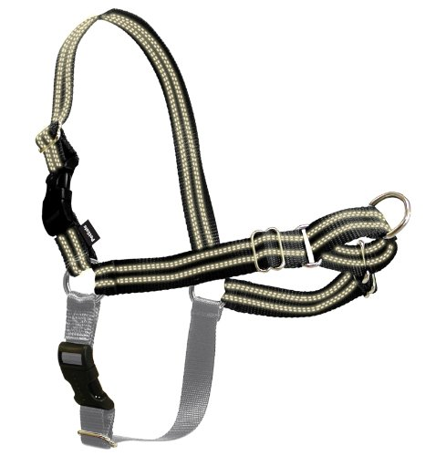 how to apply easy walk harness