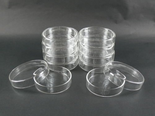 Professional Science Borosilicate Glass Petri Dishes w/ Covers 100 mm Diameter - Set of 9