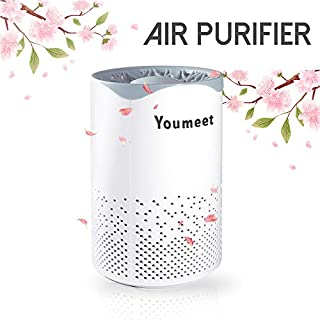 Air Purifier,Youmeet Air Cleaner with Night Light,Low noise Portable Air Filter,USB Mini Air Purifier for Home,Classroom,Dorm Room,Allergies,Pets,Car,Bedroom,Office,Smoke,Desk