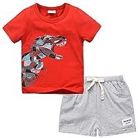Little Boys Summer Clothes 100% Cotton Short Sleeve Red Cartoon Dinosaur T-Shirt and Shorts Set 2PCS (Gray,5T)