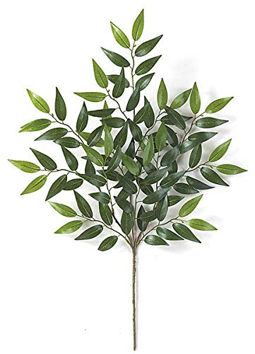 (27 Inch Smilax Branch (Sold by the Dozen) Autograph Foliages)