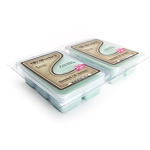 Iced Mint Lavender Wax Melts 2 Pack - Highly Scented - Made with Essential & Natural Oils - Similar to Yankee Candle Tarts or Scentsy Bars - Clean Warmer Wax Cubes Collection