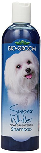 Shampoo Groom (Bio-Groom Super White Pet Shampoo, 12-Ounce)