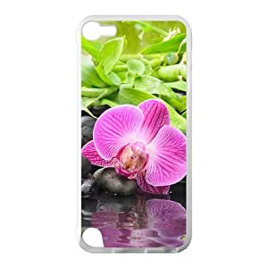 Beautiful Bamboo Stone Hot Fashion Design Case for IPod Touch 5 TPU (Laser Technology) Style 04