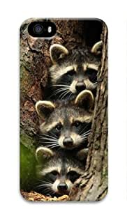 Baby Raccoon 003 Iphone 5 5S Hard Protective 3D Cover Case by Lilyshouse