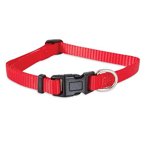 Petmate Standard Nylon Adjustable Dog Collar Red 3/8 X 8-14in