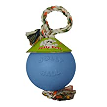 Jolly Pets 6-Inch Romp-N-Roll Blueberry Ball