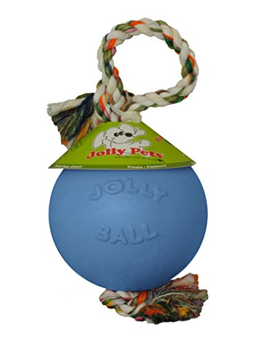 Jolly Pets 6 Inch Romp n Roll Blueberry product image