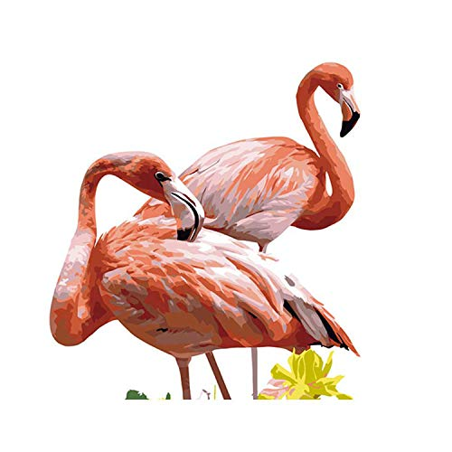 Oil Painting by Numbers Flower Acrylic Paint Wall Painting Flamingo Picture Coloring by Numbers On Canvas Home Decor w2276 30X40 cm no Framed