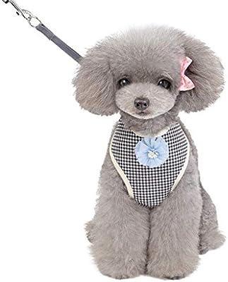 XLGX - Arnés para el pecho y el chaleco con enganche para perro ...