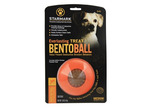 Starmark Everlasting Treat Bento Ball Tough Dog Chew Toy