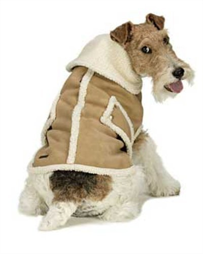 Suede Shearling Coat – SM Camel, My Pet Supplies