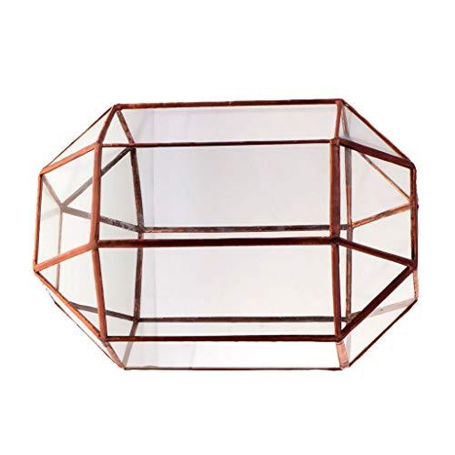 BROSCO Metal Glass Geometric Terrarium Tabletop Succulent Plant Box Pot Vase Copper