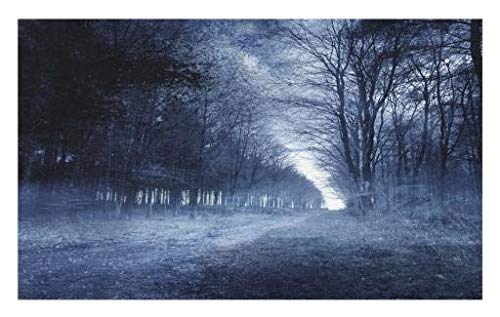 Lunarable Halloween Doormat, Ghostly Haunted Forest Image Bleak Gloomy Misty Nature Landscape, Decorative Polyester Floor Mat with Non-Skid Backing, 30 W X 18 L Inches, White Black Pale Blue -