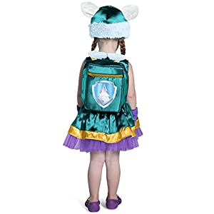 Princess Paradise Paw Patrol Everest Costume, Teal/Purple/Gold, 18m/2 Tall