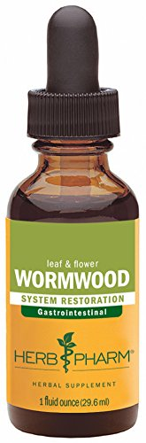 Herb Tea Extract - Herb Pharm Certified Organic Wormwood Extract for Digestive System Support - 1 Ounce