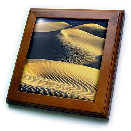 3dRose Danita Delimont - Deserts - Mesquite Sand Dunes. Death Valley. California. - 8x8 Framed Tile (ft_314725_1) ()