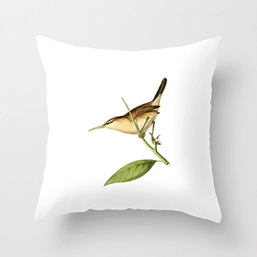 SPXUBZ Straight-billed Wren Bird Illustration Pillow Cover Decorative Home Decor Nice Gift Square Indoor/Outdoor Pillowcase Size: 16x16 Inch(Two Sides)