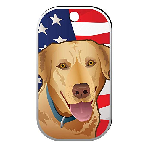 BSARRE Custom ID Pet Tag Double Sided Stainless Steel Square Necklaces Dog Tag Pendant USA Yellow Lab ()