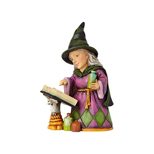 Enesco Jim Shore Heartwood Creek Mini Witch with Spell Book]()