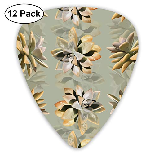 Succulent Plants With Reflections Bendy Ultra Thin 0.46 Med 0.73 Thick 0.96mm 4 Pieces Each Base Prime Plastic Jazz Mandolin Bass Ukelele Guitar Pick Plectrum Display