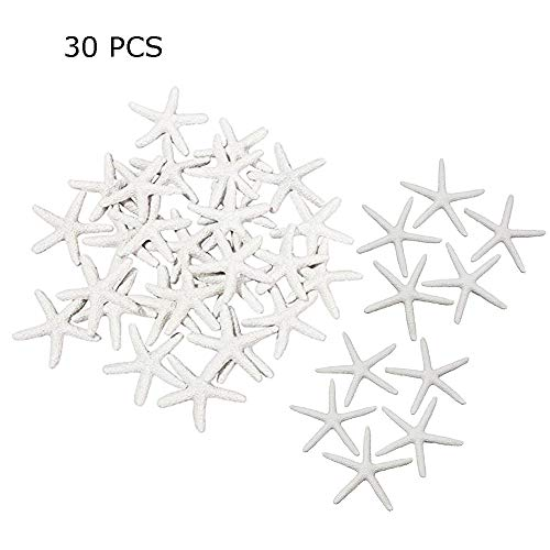 30PCS Starfish White Resin 2.3 Inches Star Fish Pencil Finger Sea Star for Wedding Party Ornaments,Coastal Beach Home Decor and Craft Project